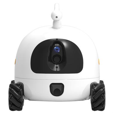 Smart Robot Companion